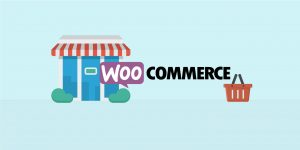 10 Template WordPress eCommerce Terbaik